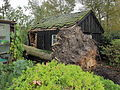 Storm Christian teistert Nederland op maandag 28 10 2013. 01.JPG