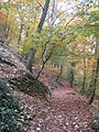 Strazilovo jesen, 2010-10-24 - panoramio.jpg