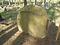 Studzianka-mizar-180422-06.jpg