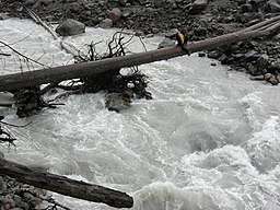 Suiattle River Crossing (5038410206).jpg