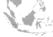 Sumatran Water Shrew range