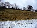 Swaledale snowline - geograph.org.uk - 1727852.jpg