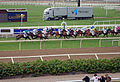Täby Galopp Race Finish.JPG