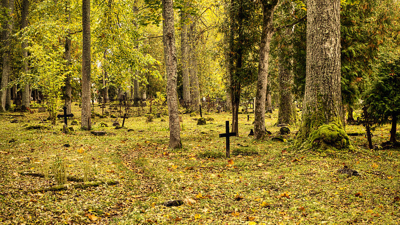 File:Türi Kesklinna kalmistu.jpg