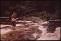 TROUT FISHERMAN FISHING ON TWITCHELL CREEK NEAR BIG MOOSE NEW YORK, IN THE ADIRONDACK FOREST PRESERVE - NARA - 554520.tif