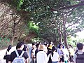 TW 台灣 Taiwan 新台北 New Taipei 萬里區 Wenli District 野柳地質公園 Yehli Geopark August 2019 SSG 16.jpg