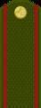 Tajikistan-Army-OR-1.png