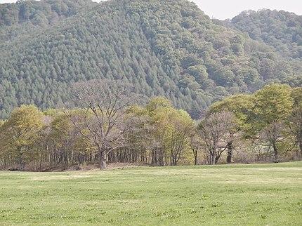 県道21号線沿いの小国牧場