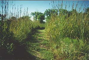 Tallgrass Prairie National Preserve - Image: Tallgrass Prairie Trail