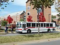 Tan Route, Razorback Transit makes stop at NWQ.jpg