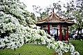 Taoyuan, Taoyuan District, Taoyuan City, Taiwan - panoramio (10).jpg