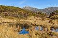 Tarns by Yeats Ridge Hut, West Coast, New Zealand.jpg