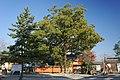 Tatsuta-jinja Ikaruga Nara Pref03n4592.jpg