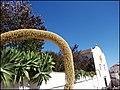 Tavira (Portugal) (33229343222).jpg