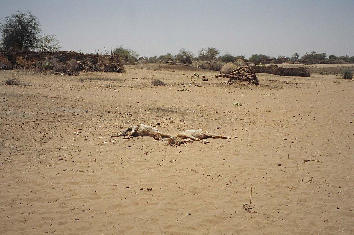 The Forgotten Genocidal War in Darfur Revealed in New Satellite Photos