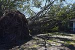 Team Seymour stands strong through Hurricane Matthew 161009-F-SM956-0058.jpg