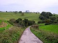 Tegdown Hill - geograph.org.uk - 71597.jpg