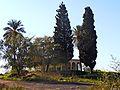 Tell Shalaf, Shfela, Israel תל שלף, שפלת יהודה - panoramio (5).jpg