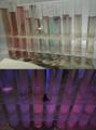 Test tubes of porphyrine solution under UV.tif