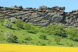 Teufelsmauer (Landkreis Harz, Sachsen-Anhalt). IMG 2254WI.jpg