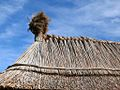 Thatched roofs z03.JPG