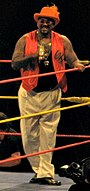 The Godfather Hulkamania Tour 2009.jpg