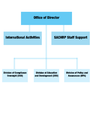 The Office of Human Research Protections Organizational Structure Graph.png