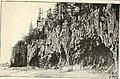 The Pine-tree coast (1891) (14780245844).jpg