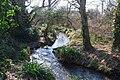 The River Alver (3) - geograph.org.uk - 1741539.jpg