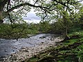 The River Wharfe, Low Park - geograph.org.uk - 425384.jpg