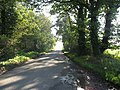 The Road To North Pickenham - geograph.org.uk - 297038.jpg