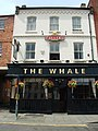 The Whale - geograph.org.uk - 479642.jpg