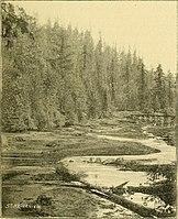 The street railway review (1891) (14574066868).jpg