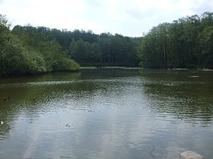 Wetland deposits in Scandinavia - Thorsberg moor in Anglia, Schleswig-Holstein, modern Germany, was the site of depositions for four centuries