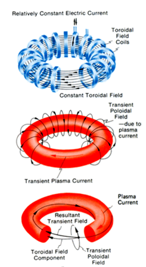 Magnetic confinement fusion - Tokamak magnetic fields.