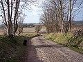 Track near Princeland Farm - geograph.org.uk - 408386.jpg