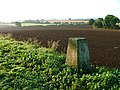 Trig. Point, Toft Hill - geograph.org.uk - 52668.jpg