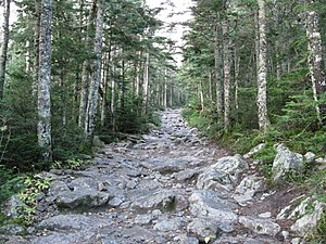The Tuckerman Ravine trail