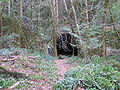 Tunnels 002.jpg