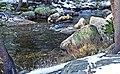 Tuolumne River, Yosemite NP 5-20-15b (18624239610).jpg