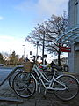 UBC bike racks.jpg