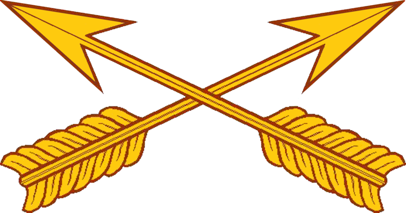 File:USA - Special Forces Branch Insignia.png
