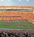 UT-Rice-Panorama-092307-crop.jpg