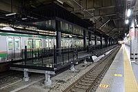 Ueno station 13.5 all platform.jpg