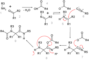 Ugi reaction - Detailed Ugi mechanism