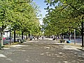 Unter Den Linden Berlin - 2006.jpg