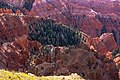 Up over 10,000 feet 0n Utah 148 into Cedar Breaks National Monument - (22190878583).jpg
