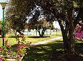 Urb El Penoncillo-piscina y jardin - panoramio.jpg