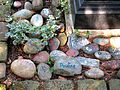 VI. An dem Ort des Gedenkens auf dem Bergfriedhof Heidelberg erinnern die Namen und ein letzter Gruß auf Steine gemalt von Freunden und Angehörigen an die Dahingegangenen.JPG
