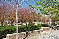 VIEW , ®'s - DiDi - RM - Ð 6K - ┼ , MADRID PARQUE de PEÑUELAS JARDÍN - panoramio (110).jpg